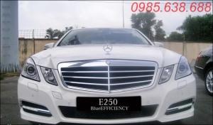 Xe Mercedes Benz E250 Blueeffiency 2012